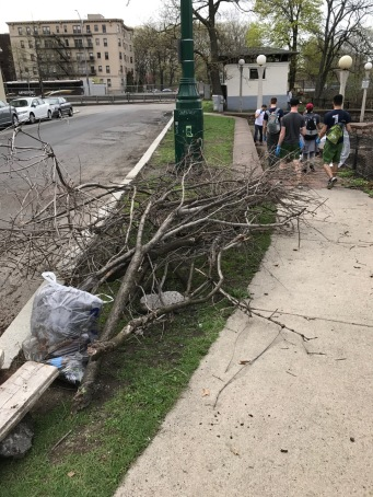 Branches and trash waiting for pickup